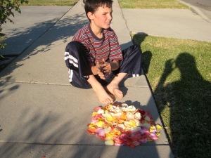 Dillan flower piles 005
