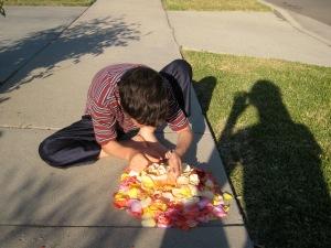 Dillan flower piles 006
